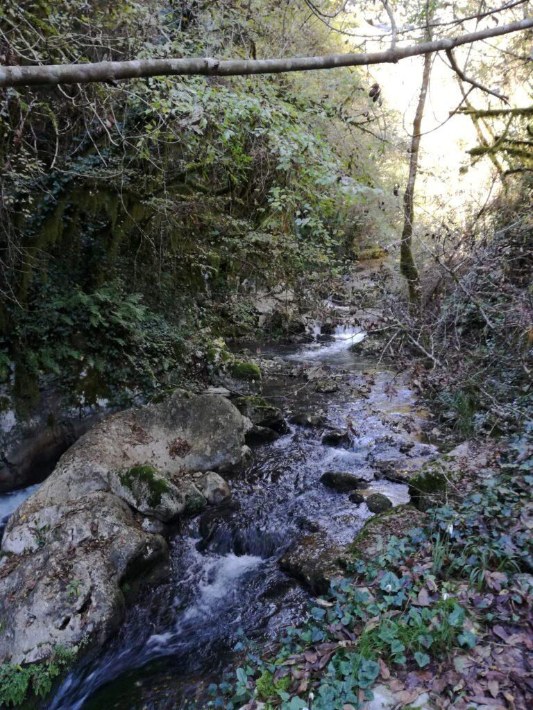 fiume oasi bussento